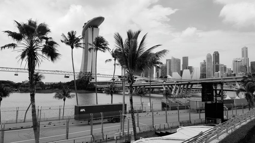 Other side of Marina Bay Sands Singapore Palm Tree Built Structure Architecture Building Exterior City Blackandwhite Tree Tall - High Water Growth Sky Cloud Skyscraper Tall In Front Of Cloud - Sky Modern Treelined Day Skyline Streetsofsingapore City Life Streetphotography