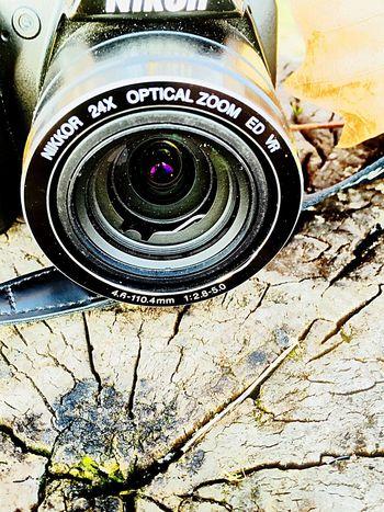 Nikon Wood Afternoon Fishing Opticalzoom Sun