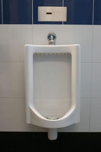 Urinal Urinals