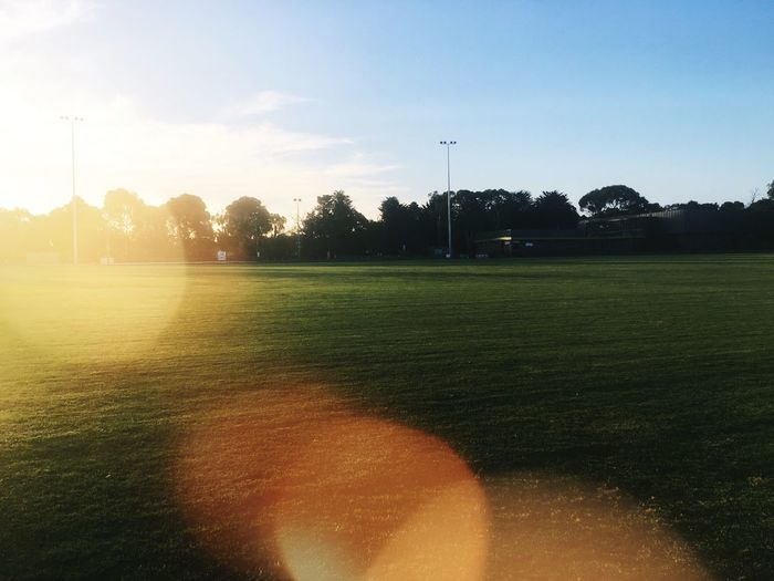 Footy Oval Sunset Sunlight Grass Playing Field Green Color Sport Outdoors Soccer Field No People Footy Oval Oval Sun Leak Green Oval Lawn Field