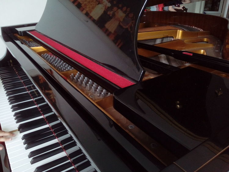 Piano Piano Keys Pianist Piano Time Piano Key Pianoforte Piano Lover Piano🎶 Piano Music Pianoporn Piano Practice Human Finger INDONESIA Music Brings Us Together Piano Moments Music Musical Instrument High Angle View Arts Culture And Entertainment Indoors  Close-up No People Keyboard Day