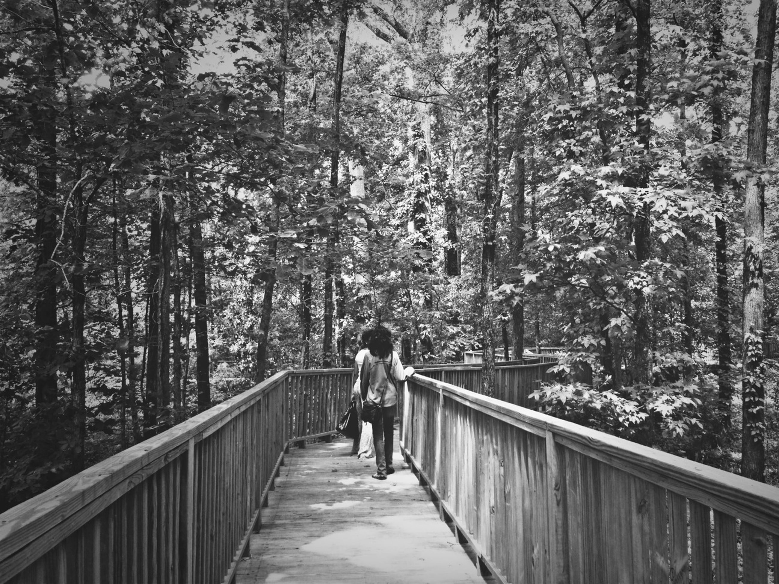 lifestyles, tree, rear view, full length, leisure activity, railing, togetherness, walking, men, bonding, the way forward, love, person, casual clothing, girls, childhood, footpath