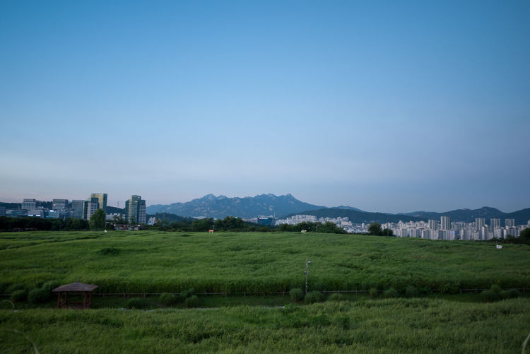 Mountain Beyond the grass Architecture Beauty In Nature Building Building Exterior Built Structure Bukhansan Bukhansan National Park City Copy Space Environment Field Grass Green Color Land Landscape Mountain Nature No People Outdoors Plant Scenics - Nature Sky Skyscraper Tranquility