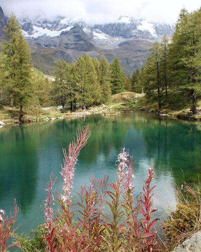 Cervinia Cervinia Valtournenche Lagoblu Aostavalley Mountain Lake Reflection Nature Beauty In Nature Scenics Landscape Travel Destinations Mountain Range Tranquility Nofilter Canoneos1300D Photo Nofilterneeded