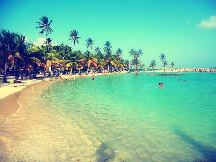 Guadeloupe ???? island baby