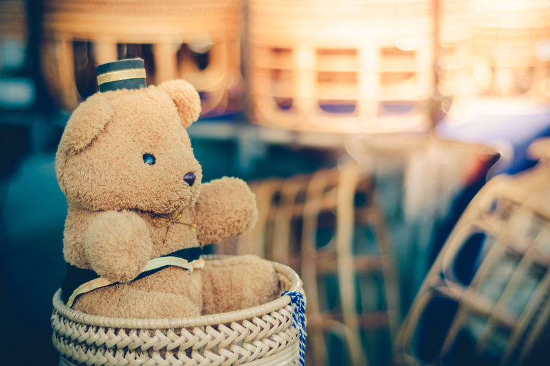 Close-up of teddy bear against blurred background