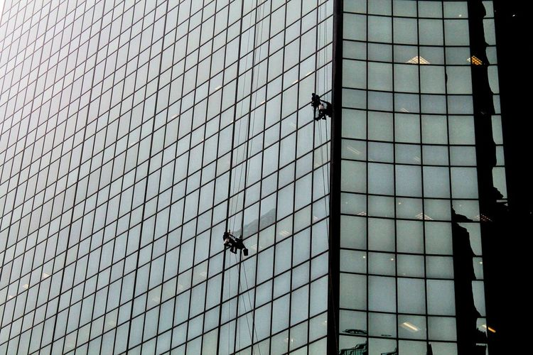 Window washer cleaning office windows