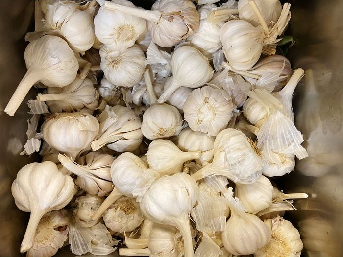 Close-up of white onions for sale in market
