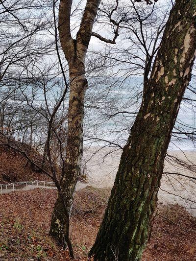 beachway Near