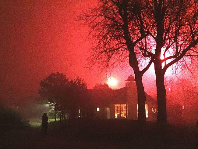 Illuminated Sylvester Outdoors Night