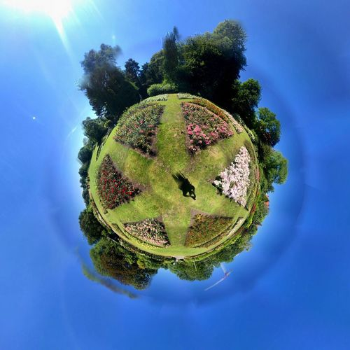 Digital composite image of trees against blue sky
