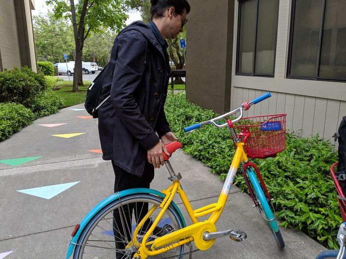 Dario fixing Google things. City Flower Environmentalist Bicycle Tree Standing Men Young Men Business Cycling