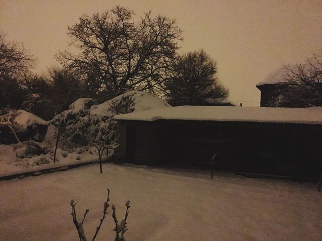 Myhome Mysweethome Winter Grozniy
