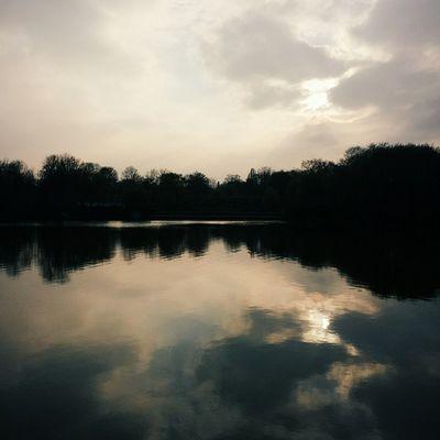 Feierabendstimmung Fridayafterwork Palmengarten Reflections hometownlove thisisleipzig vscocam