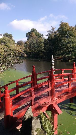 Japanese Garden Red Water Outdoors No People Sky Tree Day Nature A Peaceful Weekend For My Eyeem Friends October Sunshine! Happy Moments