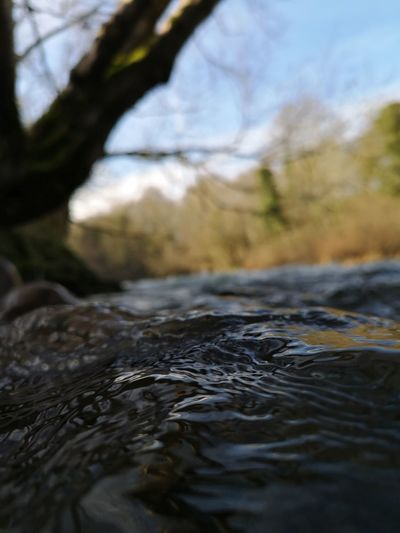 Surface level of water flowing in river