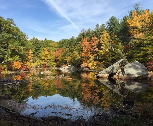 Reflection Autumn Colors Autumn In New England Scenics Tranquility Fall Colors No Filter Needed
