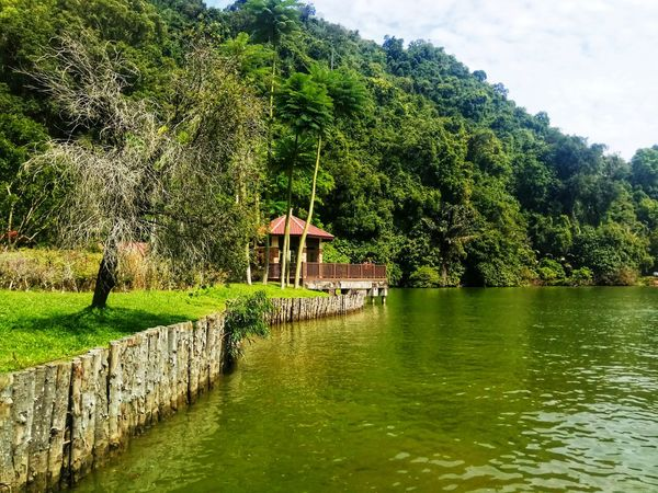 kau dapat tenang Greenery Green Green Green Green!  Green Leaves Water Lake View Lake Outdoor Photography Nature Photography Peace And Quiet Naturelovers Inner Peace Outdoors Nature Beauty Orange Color Nature Positive Sign Tree Water Sky Architecture Grass Green Color Built Structure Tranquility Growing Young Plant