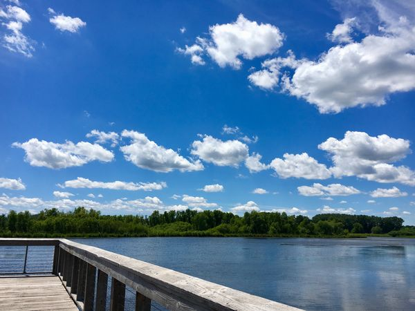 Waterfront Lakeshore Purgatory Creek Park Cloud - Sky Sky Blue Lake Water Day Tranquil Scene Scenics Tranquility Nature Outdoors Beauty In Nature No People Lakeside Lake View Tranquility Nature Sommergefühle