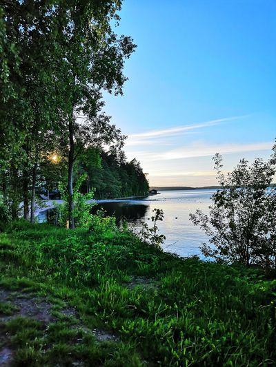 Water, Lake,