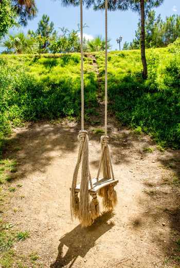 Wooden swing with ropes in tropics Bright Colors Day Idyllic Nature No People Nobody Outdoors Peaceful Ropes Scenery South Summer Summertime Sunny Swing Tranquil Tropical Climate Turkey Wooden