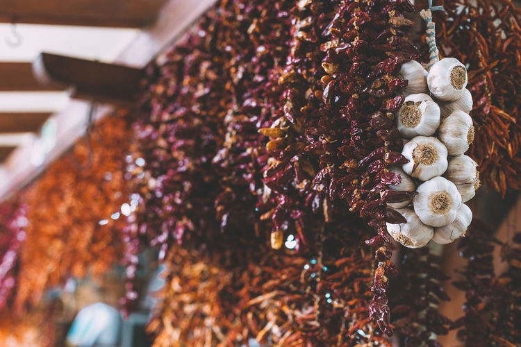 Low angle view of chili peppers and garlic cloves hanging at market stall