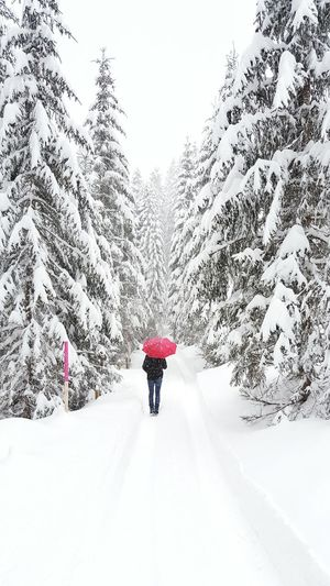Rear view of woman walking on snow covered landscape