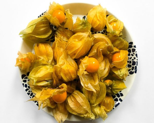 Plate of Physalis Food And Drink Food White Background Freshness High Angle View Healthy Eating Yellow Studio Shot Fruit No People Close-up Ready-to-eat Physalis Physalis Fruit Cape Gooseberry Gooseberry Flat Lay