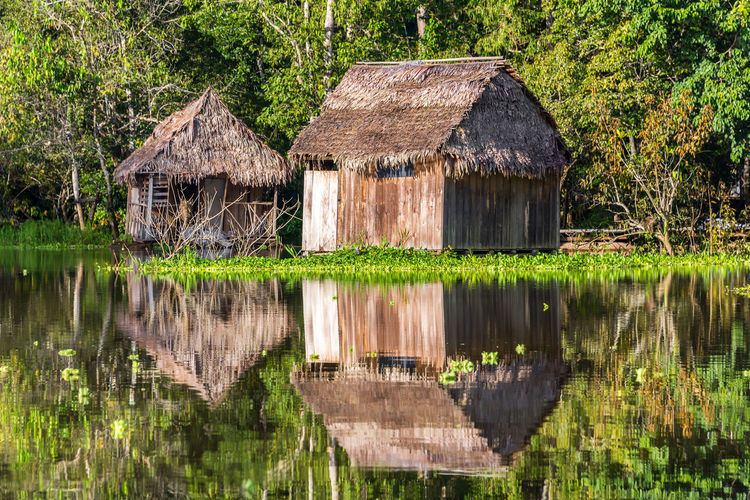 Two shacks reflected in the Amazon rainforest near Iquitos, Peru Adventure Amazon Amazonia Background Flood Forest Green Holiday Hut Iquitos  Iquitos, Perú Jungle Lake Lodge Nature Park Peru Rainforest Reflection River South America Travel Tropical Vacation Water
