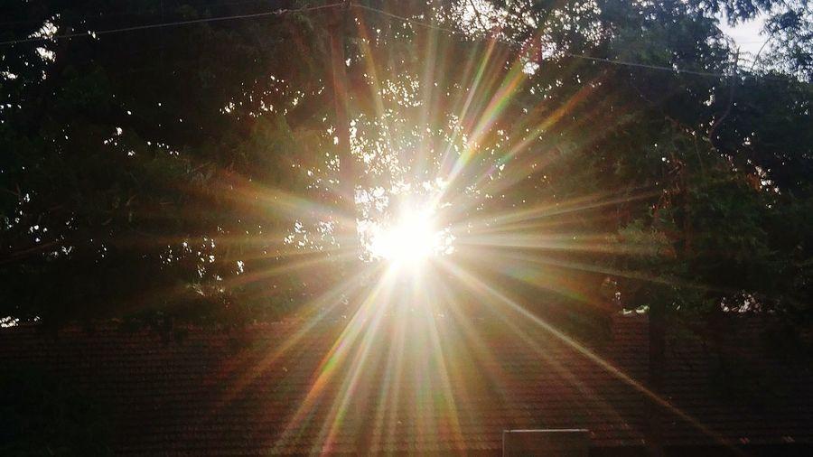 No People Light Beam Outdoors Illuminated Tree Sky Day Pattern Multi Colored Nature NewHere ✌🏽️😄 EyeEmNewHere NewEyeEmPhotographer Like4like Love Sunlight Tree Spotted Sun