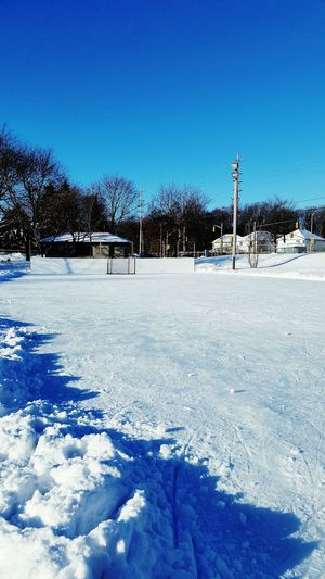 Rink is ready ??