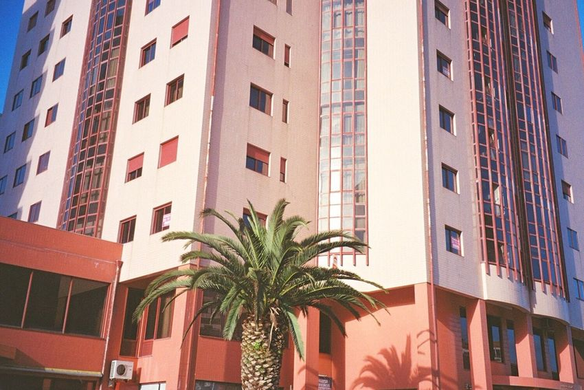 This is not Miami 🌴 Palm Trees Buildings Colors Portugal 35mm Filmisnotdead Analog Daydreaming Architecture Traveling Colour Of Life