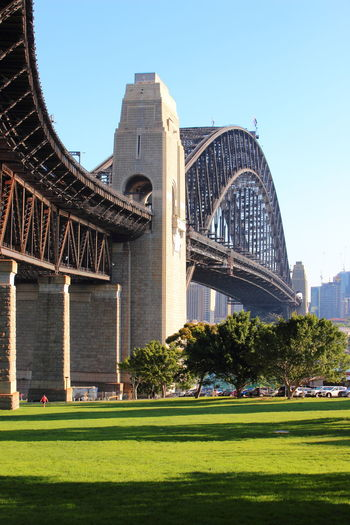 Australia Sydney Harbour Bridge Travel Architecture Blue City Clear Sky Day Fame Grass Nature No People Outdoors Sky Sydney Travel Destinations Tree Bridge - Man Made Structure Cityscape Suspension Bridge Tall - High