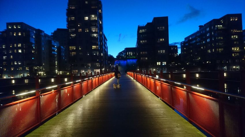 Architecture Illuminated City Night Built Structure Skyscraper Building Exterior The Way Forward City Life Travel Destinations Bridge - Man Made Structure Urban Skyline Outdoors Modern Sky Cityscape No People Eriksberg Goteborg Gothenburg