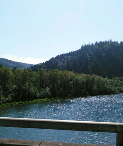 Beautiful Weather♡ and Beautiful Great Views of Riverand Green Talltrees .