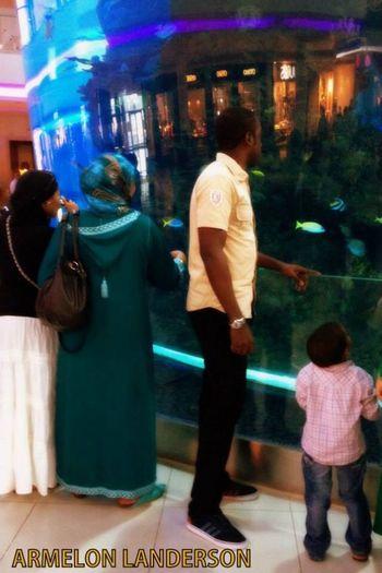 Morocco Mall Morocco
