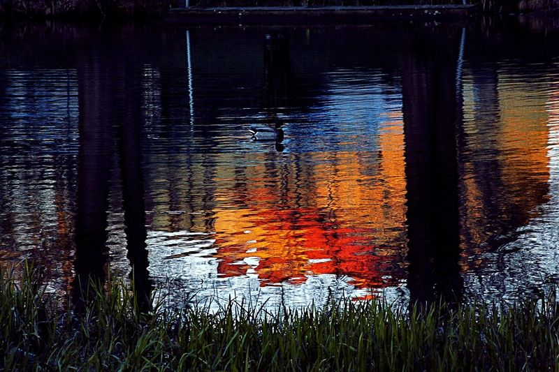 Sweden The True Story Water Sunset Reflection Lake Red Close-up Sky Standing Water Standing Water Reflection Lake
