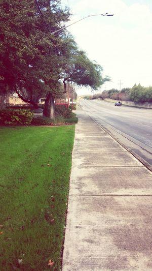 A little neighborhood run in perfect 48 degree weather 👣 First Eyeem Photo