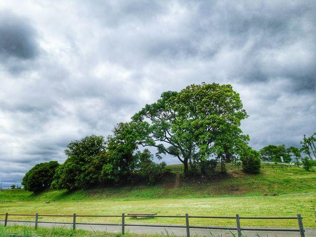EyeEm Gallery Oil Pump Tree Rural Scene Storm Cloud Protection Security Safety Sky Landscape Cloud - Sky