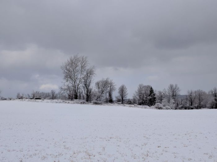 Snow day EyeEm