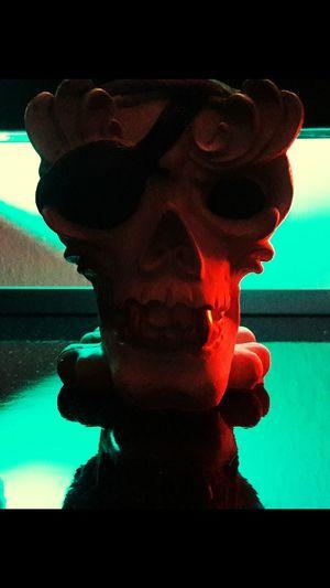 Dark Skulls 💀 Pirate