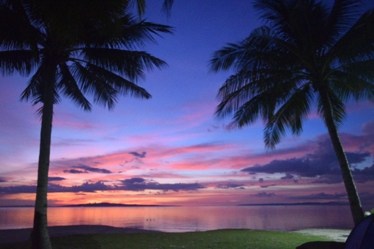 scenics, palm tree, tranquil scene, tranquility, beauty in nature, sunset, nature, idyllic, sky, sea, tree, no people, landscape, outdoors, water, beach, vacations, day