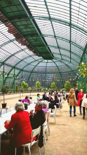 Greenhouse Brussels Tearoom Serres De Laeken (Brussels).