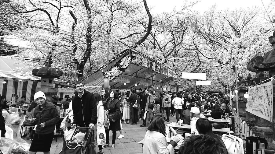People Day Uenopark Ueno Tokyo Japan AndroidPhotography Smartphonephotography Holiday Nice Place Happy Time Walking Around