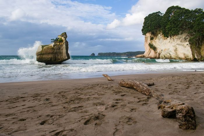 Wave Beach Beauty In Nature Cathedral Cove Cloud - Sky Day Horizon Over Water Nature New Zealand No People Outdoors Sand Scenics Sea Sky Tree Water