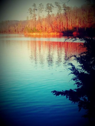 Colorsofwinter Alabama Guntersville Orangeandblue Lake Nature Guntersvillestatepark Myquietplace chill