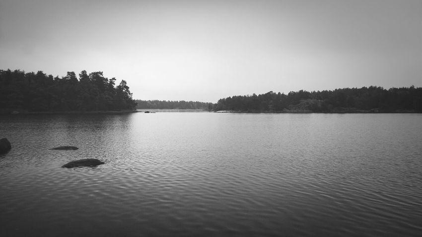 Autumn Black And White Morning Sverige
