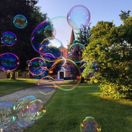Bubble Bubble Wand Bubble Soap Sud Fragility Transparent Rainbow Blowing Spectrum Double Rainbow Reflection Tree Mid-air Fun No People Day Multi Colored Outdoors Refraction Motion Bird Feeder