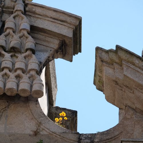 Flowers on the Cathedral Flower Pilgrim Pilgrimage Architecture Built Structure Low Angle View Sky History Clear Sky The Past Old Place Of Worship Travel Destinations Building Exterior Ancient