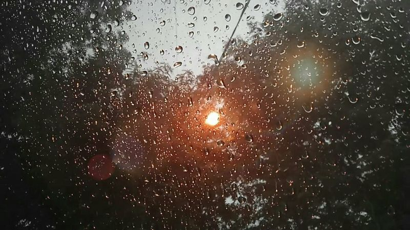 Window Night Water Photography Outdoors Rain Tree Street Light Lights Photooftheday Sky TheWeekOnEyeEM Picoftheday The Week Of Eyeem Silhouette Light